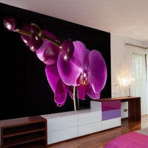 Papier Peint Panoramique élégant  orchidée