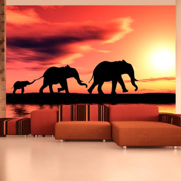 Papier Peint Panoramique éléphants: famille