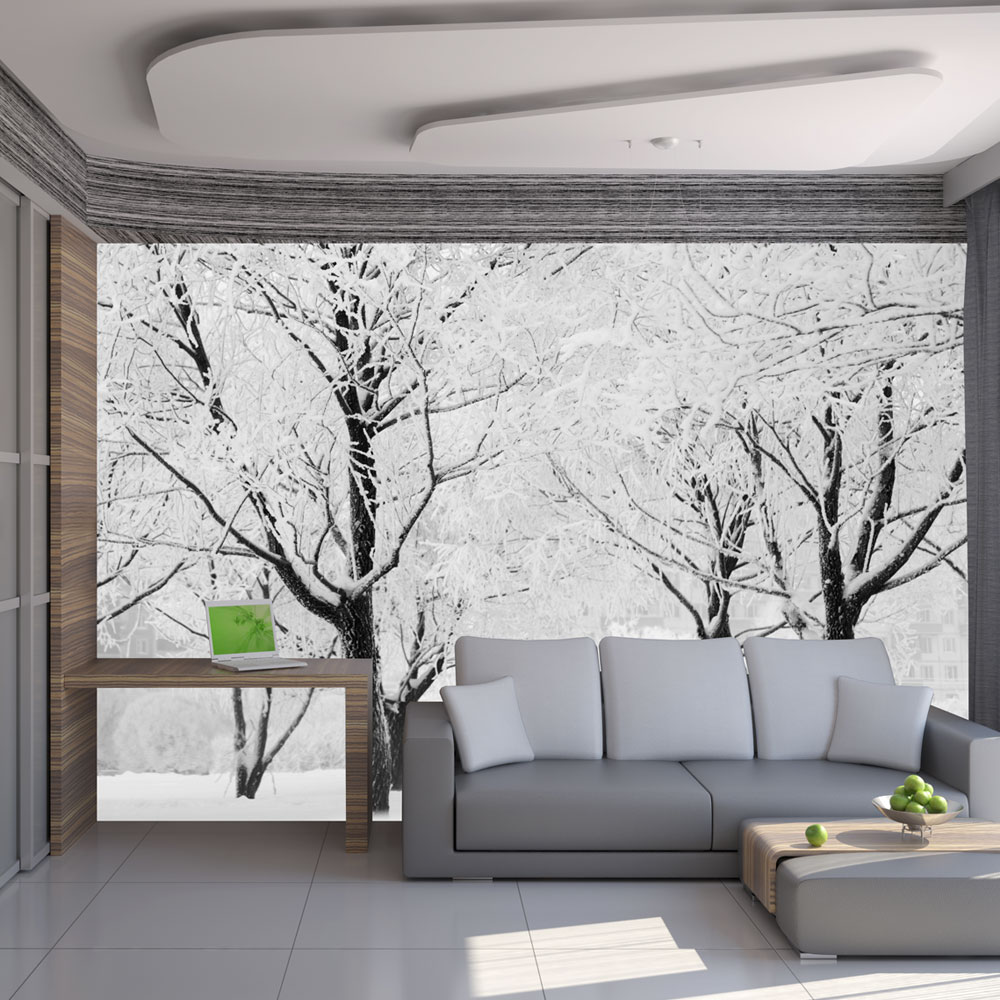 Papier Peint Panoramique Paysage papier peint panoramique arbres - paysage d'hiver