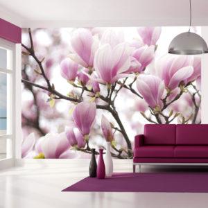Papier Peint Panoramique Branche de magnolia en fleurs