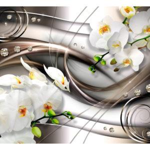Papiers peints > Fleurs > Orchidées