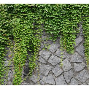 Tapisserie murales > Brique