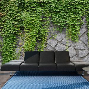 Papier Peint Panoramique Mur vert