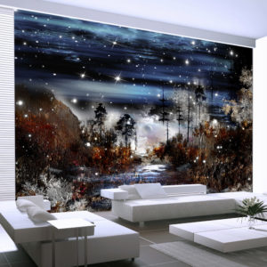 Papier Peint Panoramique Nuit dans la foret