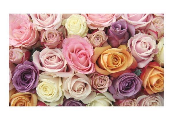 Tapisserie murales Fleurs > Roses