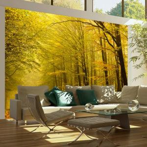 Papier Peint Panoramique Route dans la forêt d'automne