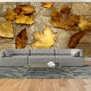 Papier Peint Panoramique Signes avant-coureurs de l'automne