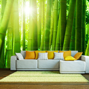 Papier Peint Panoramique Soleil et bambou