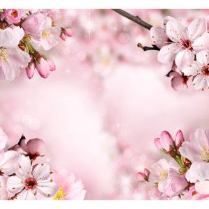 Tapisserie murales Fleurs > Fleurs cerisiers