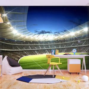 Papier Peint Panoramique Stade national