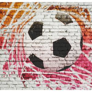 Tapisserie murales Hobby > Sport