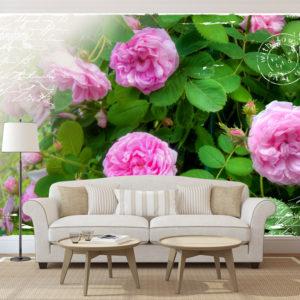 Papier Peint Panoramique Summer garden