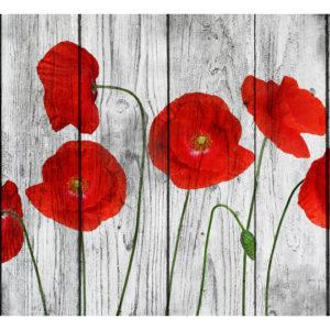 Tapisserie murales Fleurs > Coquelicots