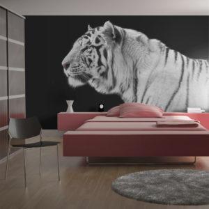 Papier Peint Panoramique Tigre blanc