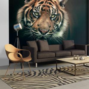 Papier Peint Panoramique Tigre du Bengale