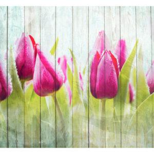 Tapisserie murales Fleurs > Tulipes