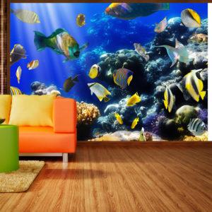 Papier Peint Panoramique Underwater adventure