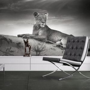 Papier Peint Panoramique Une lionne en noir et blanc