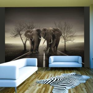 Papier Peint Panoramique Ville d'éléphants