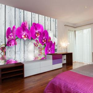 Papier Peint Panoramique Violet orchids with water reflexion