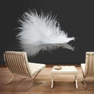 Papier Peint Panoramique White feather