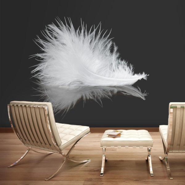 Papier Peint Panoramique White feather