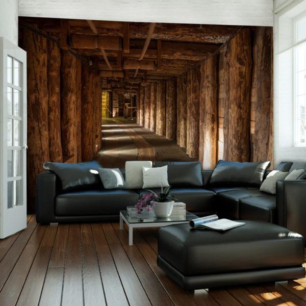 Papier Peint Panoramique Wooden passage