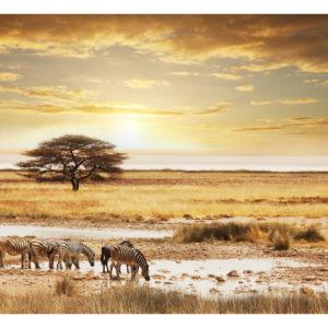 Tapisserie murales Paysages > Afrique