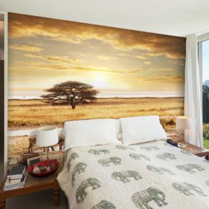 Papier Peint Panoramique Zèbres africains à l'abreuvoir