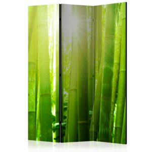 Paravent 3 volets - Sun and bamboo