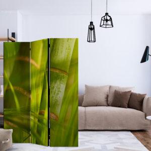 Paravent 3 volets - bamboo - nature zen séparateur de piece