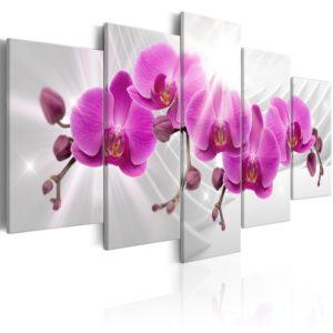 Tableau - Abstract Garden: Pink Orchids fait partie des tableaux murales de la collection de worldofwomen découvrez ce magnifique tableau exclusif chez nous
