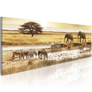 Tableau - Africa: at the waterhole fait partie des tableaux murales de la collection de worldofwomen découvrez ce magnifique tableau exclusif chez nous