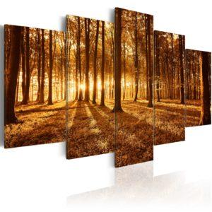 Tableau - Amber forest fait partie des tableaux murales de la collection de worldofwomen découvrez ce magnifique tableau exclusif chez nous