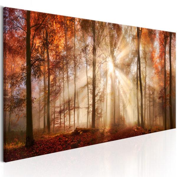 Tableau - Autumnal Dawn fait partie des tableaux murales de la collection de worldofwomen découvrez ce magnifique tableau exclusif chez nous