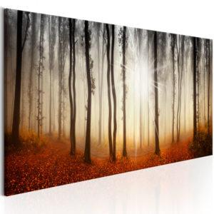 Tableau - Autumnal Fog fait partie des tableaux murales de la collection de worldofwomen découvrez ce magnifique tableau exclusif chez nous