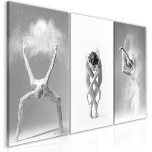 Tableau - Ballet (Collection) fait partie des tableaux murales de la collection de worldofwomen découvrez ce magnifique tableau exclusif chez nous