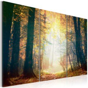 Tableau - Beauté de l'automne - triptyque fait partie des tableaux murales de la collection de worldofwomen découvrez ce magnifique tableau exclusif chez nous