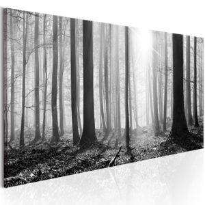 Tableau - Black and White Forest fait partie des tableaux murales de la collection de worldofwomen découvrez ce magnifique tableau exclusif chez nous