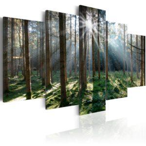 Tableau - Fairytale Forest fait partie des tableaux murales de la collection de worldofwomen découvrez ce magnifique tableau exclusif chez nous
