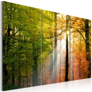Tableau - Forêt d'automne fait partie des tableaux murales de la collection de worldofwomen découvrez ce magnifique tableau exclusif chez nous