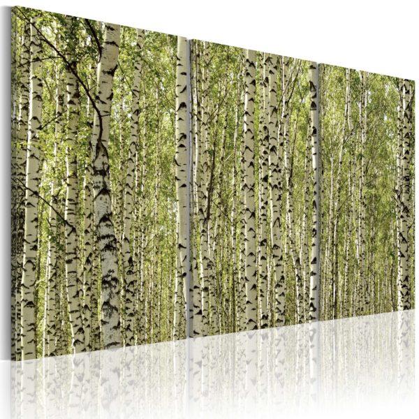 Tableau - Forêt de bouleaux fait partie des tableaux murales de la collection de worldofwomen découvrez ce magnifique tableau exclusif chez nous