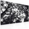 Tableau - Forêt dense fait partie des tableaux murales de la collection de worldofwomen découvrez ce magnifique tableau exclusif chez nous
