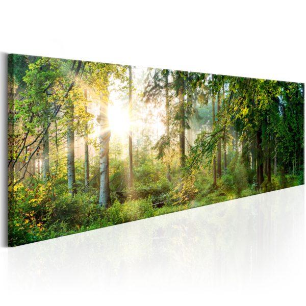 Tableau - Forest Shelter fait partie des tableaux murales de la collection de worldofwomen découvrez ce magnifique tableau exclusif chez nous