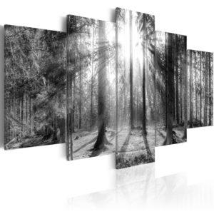 Tableau - Forest of Memories fait partie des tableaux murales de la collection de worldofwomen découvrez ce magnifique tableau exclusif chez nous