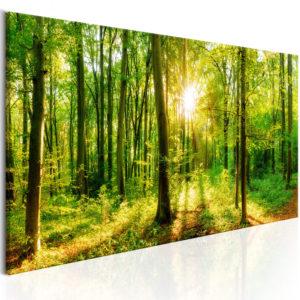 Tableau - Green Magic fait partie des tableaux murales de la collection de worldofwomen découvrez ce magnifique tableau exclusif chez nous