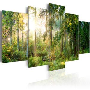 Tableau - Green Sanctuary fait partie des tableaux murales de la collection de worldofwomen découvrez ce magnifique tableau exclusif chez nous