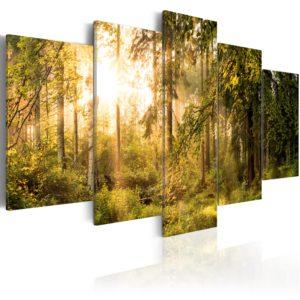 Tableau - Magic of Forest fait partie des tableaux murales de la collection de worldofwomen découvrez ce magnifique tableau exclusif chez nous