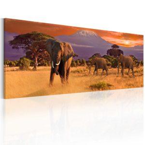 Tableau - March of african elephants fait partie des tableaux murales de la collection de worldofwomen découvrez ce magnifique tableau exclusif chez nous
