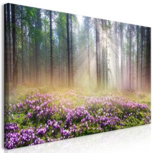 Tableau - Purple Meadow (1 Part) Wide fait partie des tableaux murales de la collection de worldofwomen découvrez ce magnifique tableau exclusif chez nous